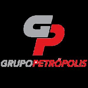 ico_grupoPetropolis.fw